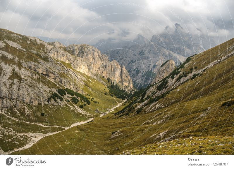 Prags high alp Italy South Tyrol Alps Mountain Rock Stone Peak Landscape Dolomites Hiking Mountaineering Climbing Nature Untouched Alpine pasture Meadow Tall