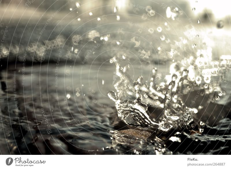 Water Sun Stone Wet Fresh Drops of water Illuminate Floor covering Inject