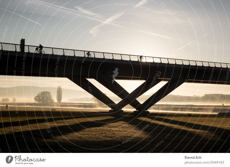 cyclist on a bridge at sunrise and fog Cycling 3 Human being Nature Landscape Sunrise Sunset Autumn Beautiful weather Tree Grass Meadow Dresden Bridge Transport