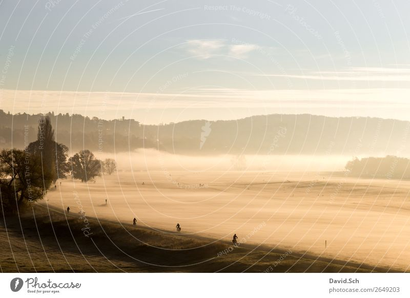 Cyclist on the Elbe cycle path near Dresden in the morning Cycling Human being 4 Nature Landscape Sunrise Sunset Autumn Climate Fog Meadow Transport