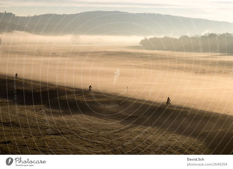 Cyclist on the Elbe cycle path near Dresden in the morning Cycling Human being 3 Landscape Sunrise Sunset Sunlight Autumn Fog Meadow Transport