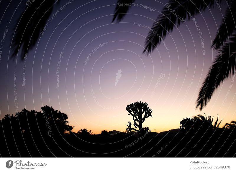 #AS# in the desert Art Esthetic Silhouette Vacation & Travel Vacation photo Vacation mood Vacation destination Vacation good wishes Desert Desert plant Remote