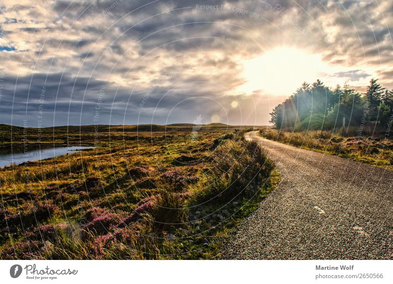 the road Environment Nature Landscape Sky Clouds Grass Scotland Great Britain Europe Street Vacation & Travel Calm Infinity Light Colour photo Subdued colour