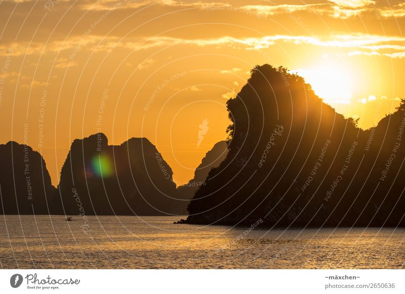 Halong Bay II Nature Landscape Elements Water Sky Beautiful weather Hill Rock Waves Coast Ocean Yellow Gold Orange Contentment Romance Relaxation Peace Vietnam