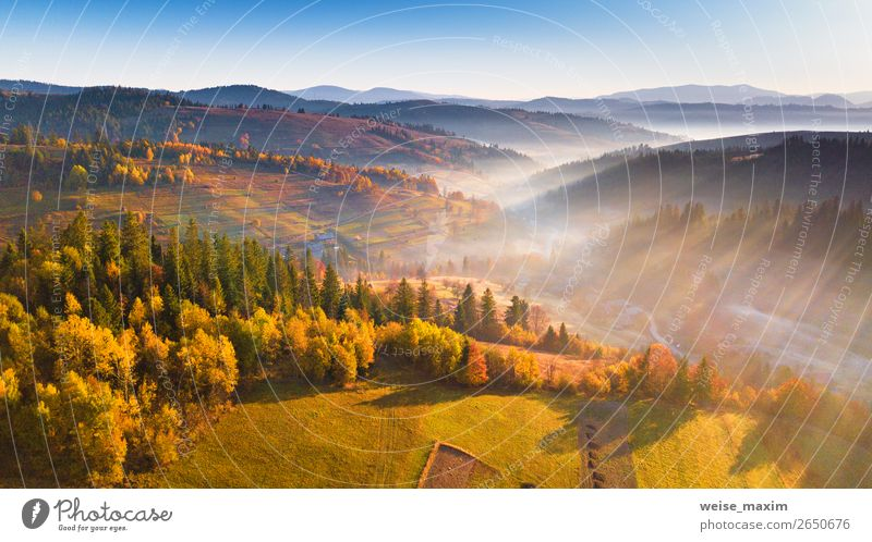 Beautiful morning light through mist and forest Sky Nature Vacation & Travel Colour Landscape Red Tree House (Residential Structure) Forest Far-off places