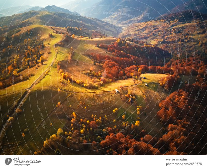 mountain autumn landscape. meadow and colorful forest Vacation & Travel Tourism Trip Far-off places Freedom Expedition Mountain Environment Nature Landscape