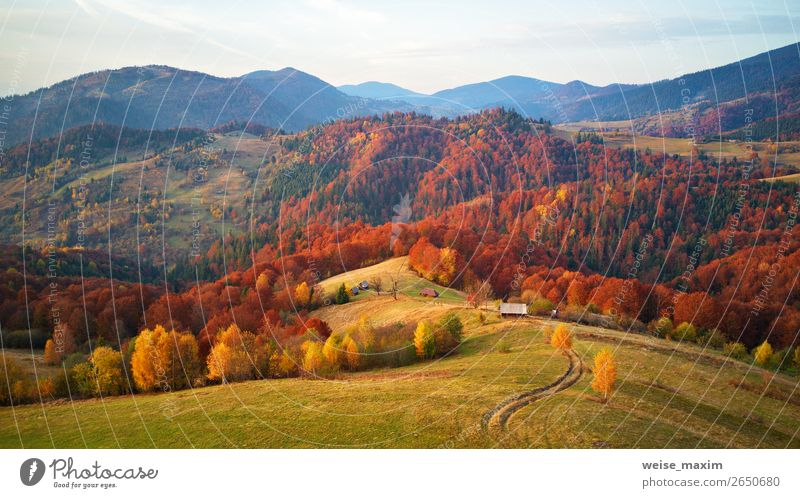 Mountain autumn landscape with meadow and colorful forest Beautiful Healthy Vacation & Travel Trip Freedom Expedition Hiking Living or residing