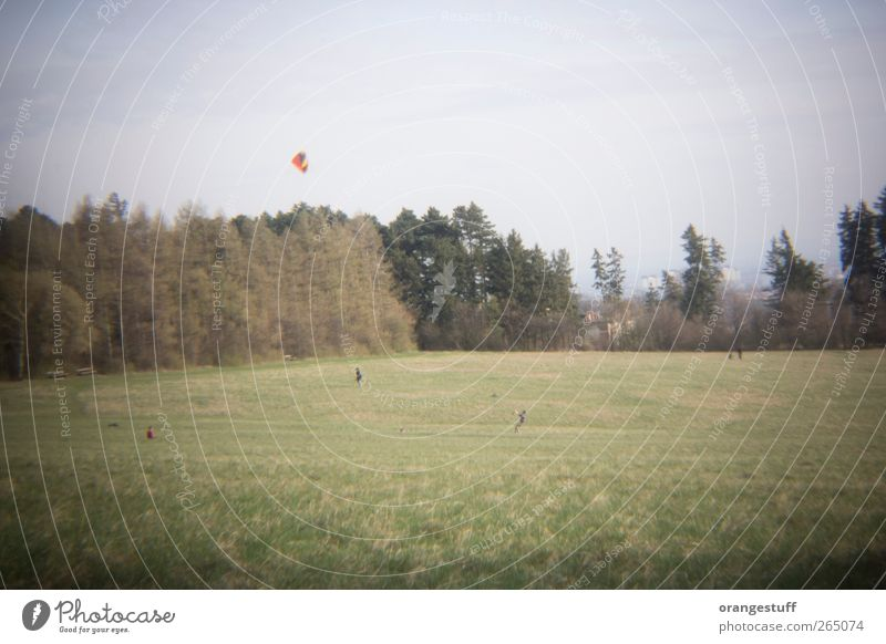 great dragon Human being Life 4 Landscape Wind Grass Park Meadow Field Vienna Steinhofgründe Relaxation Playing Hang gliding Kite Dragon Kiter Subdued colour