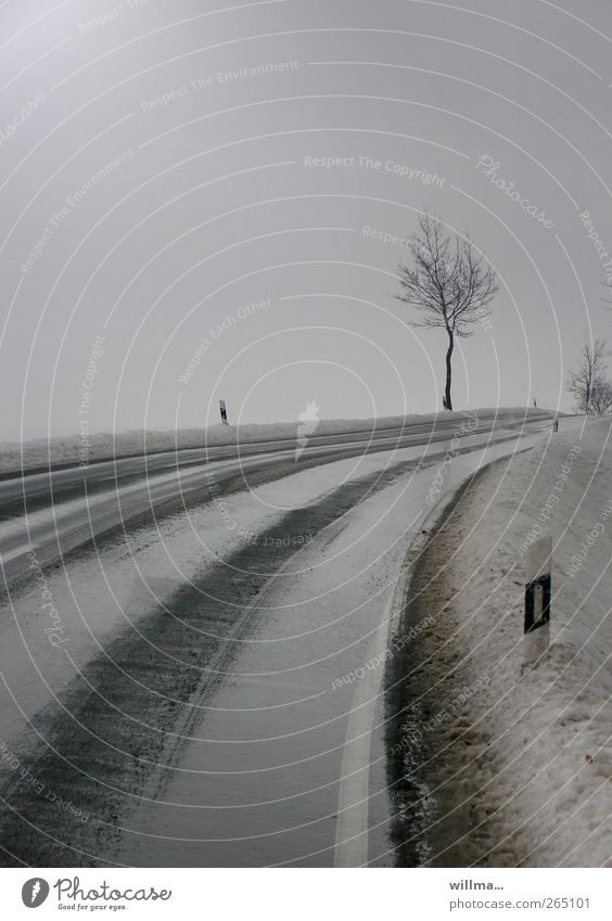 nuzcht like out of here Winter Bad weather Rain Snow Tree Traffic infrastructure Street Road sign Roadside Curve Bend Country road Reflector post Traffic lane