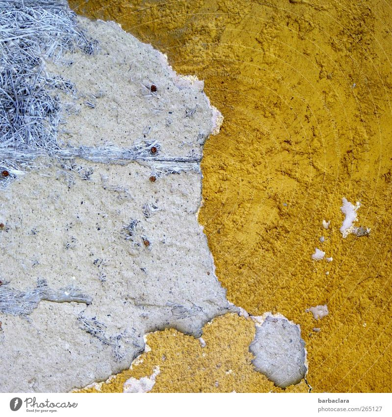 Atlantis Building Wall (barrier) Wall (building) Facade Stone Concrete Old Esthetic Exceptional Firm Broken Town Blue Yellow Gold Decline Transience Change