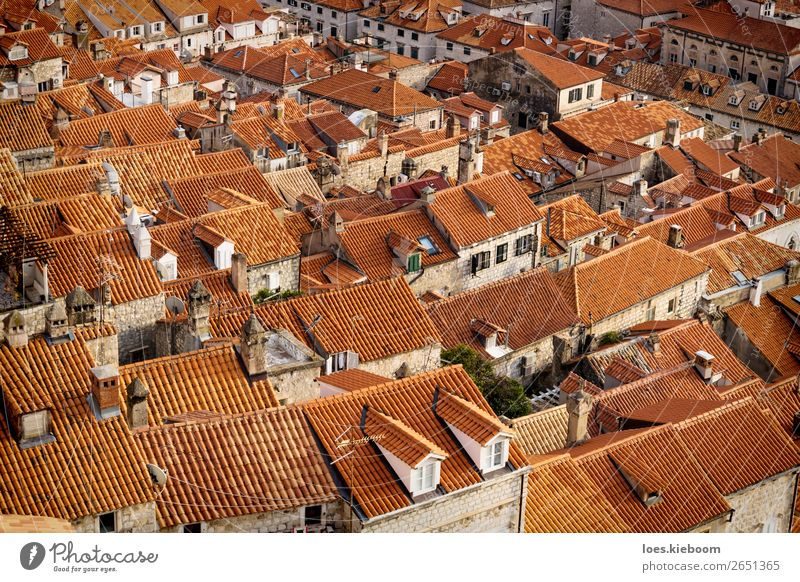 Detail of the orange roofs of Dubrovnik, Croatia Vacation & Travel Tourism Sightseeing City trip Winter Town Downtown Wall (barrier) Wall (building) Roof