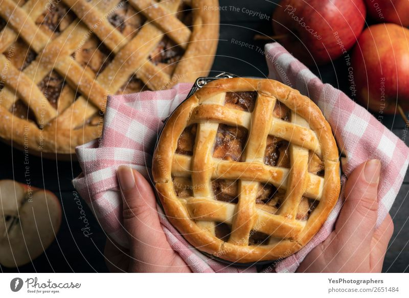 Homemade apple pie held in hands. Above view. Christmas & Advent Cake Tradition Dessert Wooden table Rustic Baking Home-made Hold American Classic Tasty