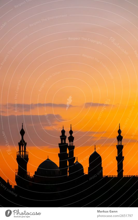 Mosque Al-Rifa'i and Sultan Hassan in Cairo Vacation & Travel Skyline Orange Religion and faith Sunset Islam Near and Middle East Background picture copy space