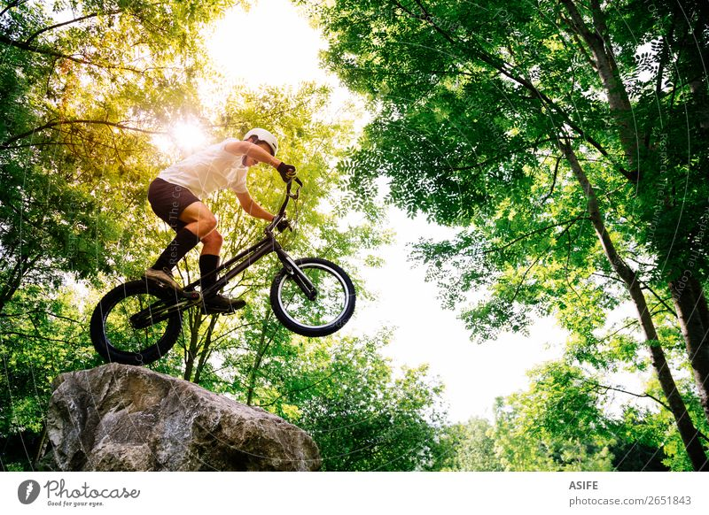 Young cyclist making tricks in a rock in the forest Nature Man Summer Tree Forest Mountain Adults Sports Freedom Rock Jump Action Cycling Strong Balance