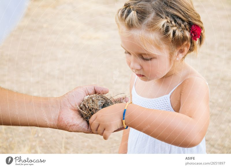 Little girl discovering nature Life Summer Child School Toddler Parents Adults Father Hand Nature Blonde Bird Love Small Curiosity Cute Nest Daughter parenthood