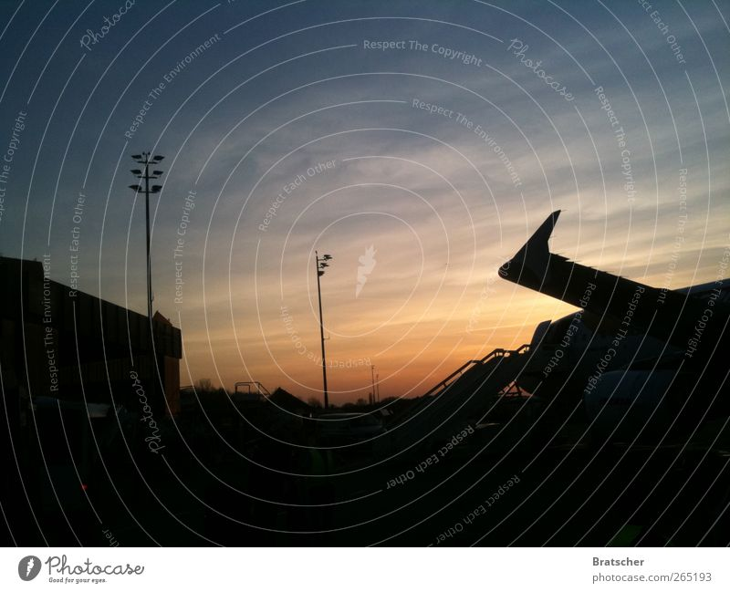 Goodbye TXL Airport Airplane Airplane landing Airplane takeoff Wanderlust Sunset Berlin Airport Berlin-Tegel Come Home country Landing Check in Wing Picturesque