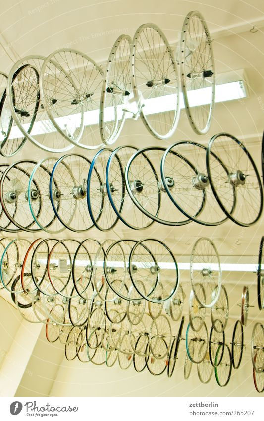 bicycle shop Leisure and hobbies Vacation & Travel Tourism Trip Cycling tour Lamp Hang New Many Offer Blanket Bicycle Wheel rim Load Room Shop window Selection
