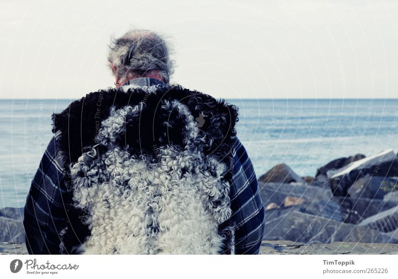 Uncle Wolfgang Masculine Man Adults Male senior Senior citizen Back 45 - 60 years 60 years and older Ocean Think Rock Coast Sea water Wool Vest Meditative