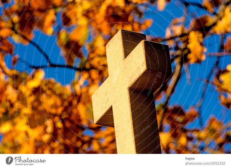 Cross with autumnal leaves in the background Crucifix Yellow To console Grateful Pain Guilty Religion and faith christian Way of the Cross Catholic pilgrim path