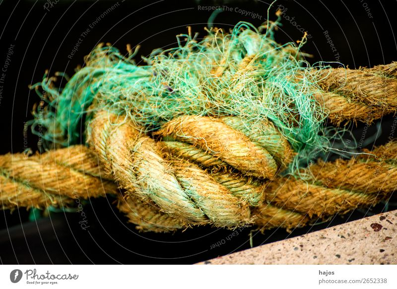 Knot of a mooring line in a harbour Navigation Old Maritime Yellow Rope sailor knot Dew Fat hemp rope mooring rope Close-up leash Colour photo Exterior shot Day