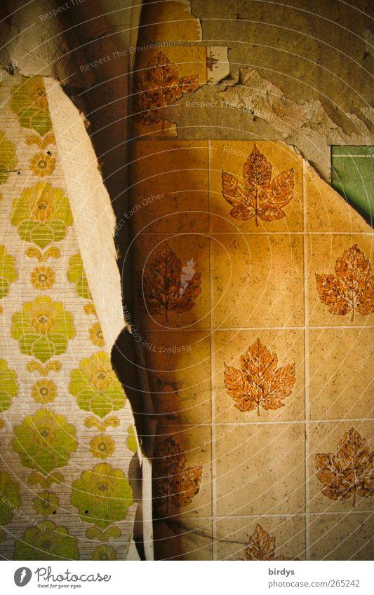 shift change Redecorate Wallpaper Old Exceptional Hideous Broken Original Nostalgia Decline Past Change Level Under Wallpaper pattern Change of scene Substitute