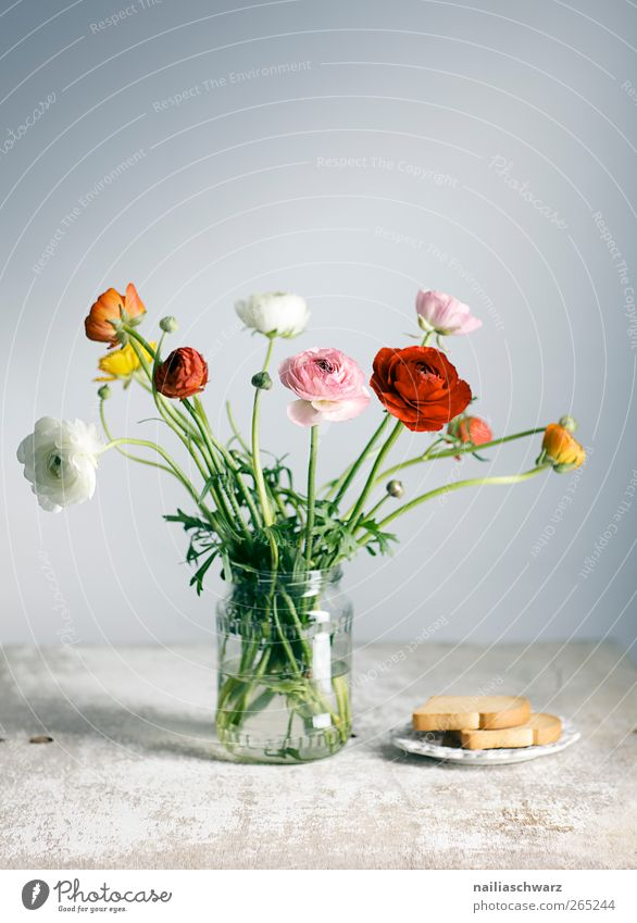 Blue White Green Red Flower Yellow Food Wood Moody Glass Pink Fresh Esthetic Decoration Bouquet