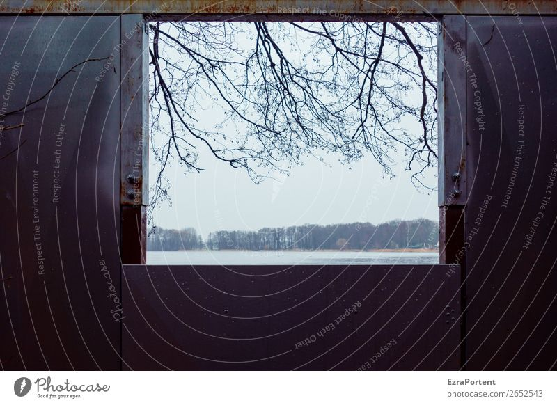 the weather outlook Environment Nature Landscape Autumn Winter Ice Frost Plant Tree Coast Lake Cold Window Vantage point View from a window Branch Sky Weather