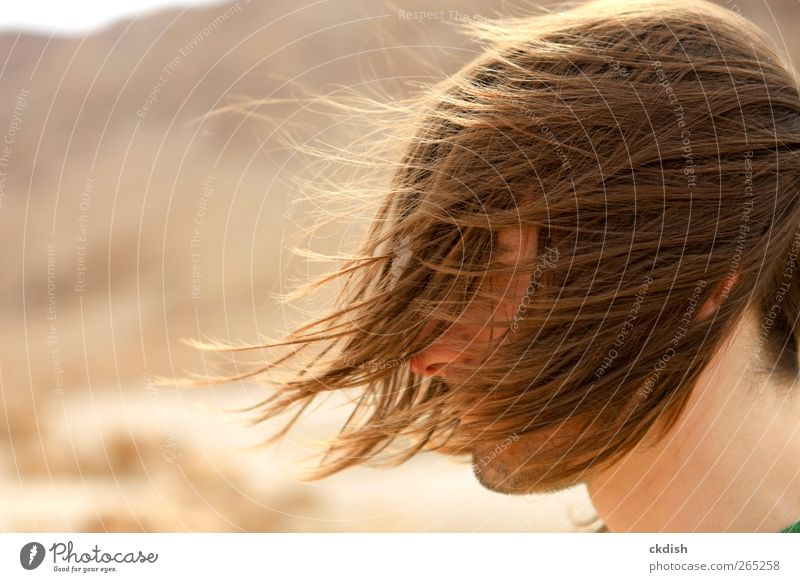Man's long hair blowing in the wind Masculine Adults Youth (Young adults) Head Hair and hairstyles 1 Human being 18 - 30 years Brunette Facial hair