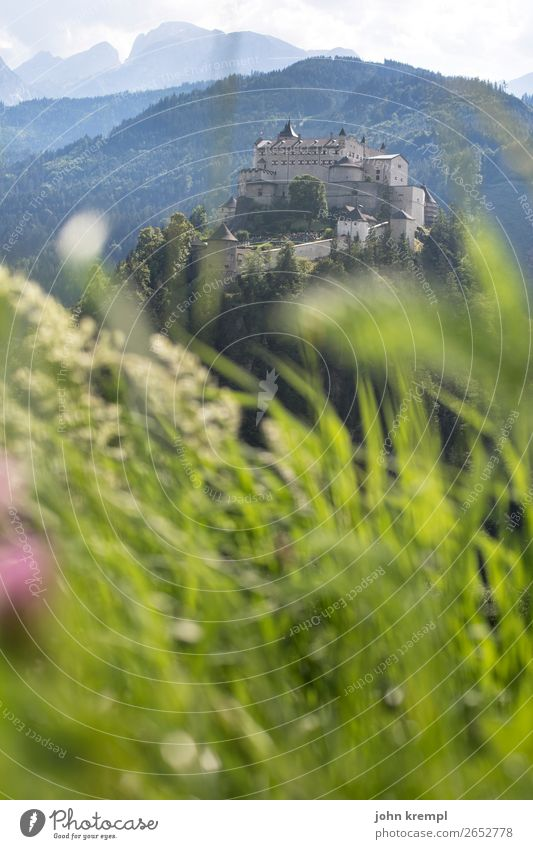 IV Hohenwerfen Castle - Ahoy, my girl Medieval times Knight Historic Tower Sky Clouds Fortress Salzburger Land Forest Exterior shot Tourist Attraction Landmark