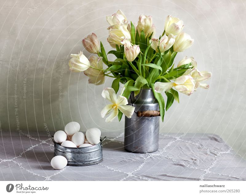Still life with tulips Food Egg Hen's egg Nutrition Plant Tulip Blossom Bouquet Milk churn Bowl Wood Metal Blossoming Fragrance Lie Esthetic Yellow Green Silver