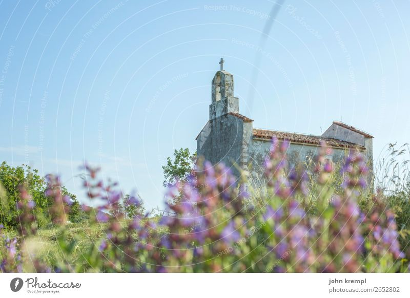 I pray myself to the chapel bed Chapel Brsec Religion and faith Shallow depth of field Copy Space top Church Village Sky Mediterranean sea Flower meadow Croatia