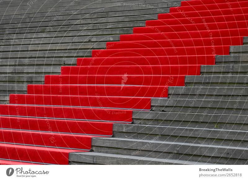 Red carpet over concrete stairs perspective Design Feasts & Celebrations Architecture Stairs Stone Concrete Gray Perspective Carpet Ascending event ceremony
