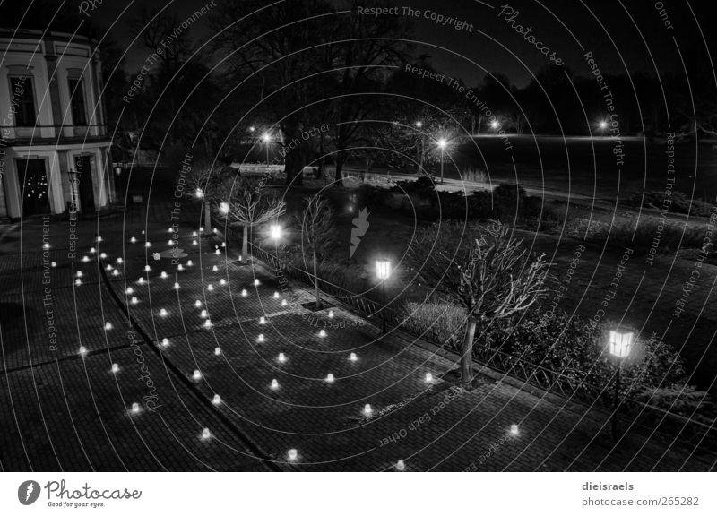 Vacation & Travel Black Meadow Dark Garden Feasts & Celebrations Park Contentment Illuminate Decoration Retro Candle Lantern Sightseeing Night sky HDR