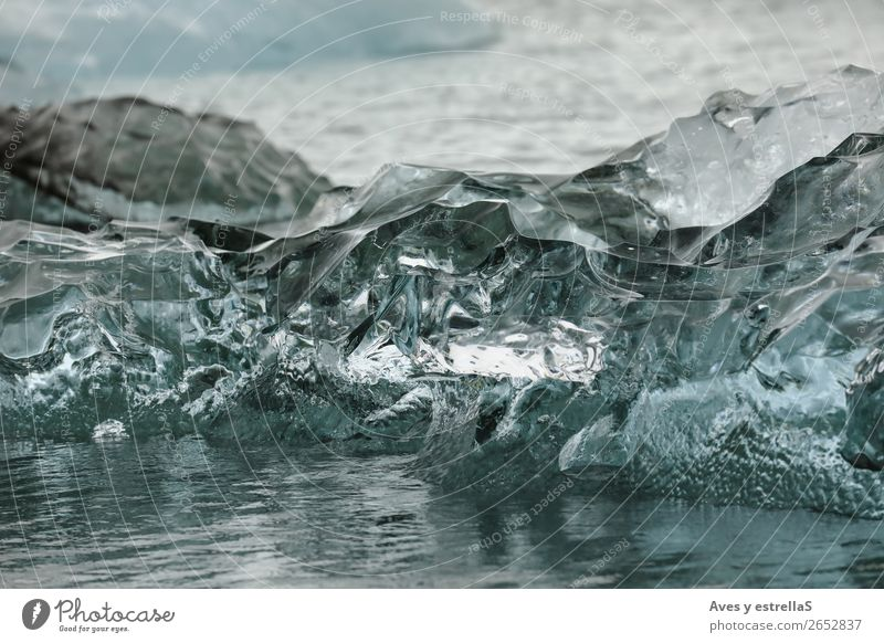 Shapes on a piece of glacier ice Ocean Island Winter Environment Water Climate change Bad weather Ice Frost Glacier North Sea Crystal Freeze Cold Natural Gray
