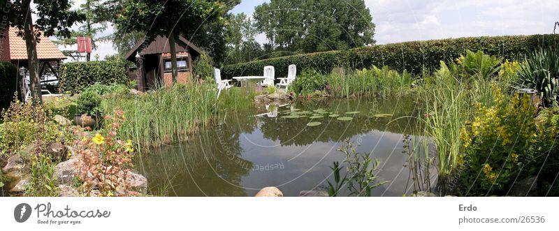 Wide garden Pond Tree Bushes Garden Hut Water