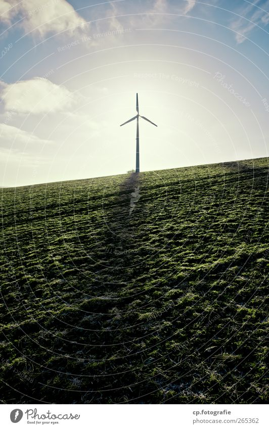 hope Technology Advancement Future Energy industry Renewable energy Wind energy plant Landscape Sunlight Spring Beautiful weather Grass Field Hope Colour photo