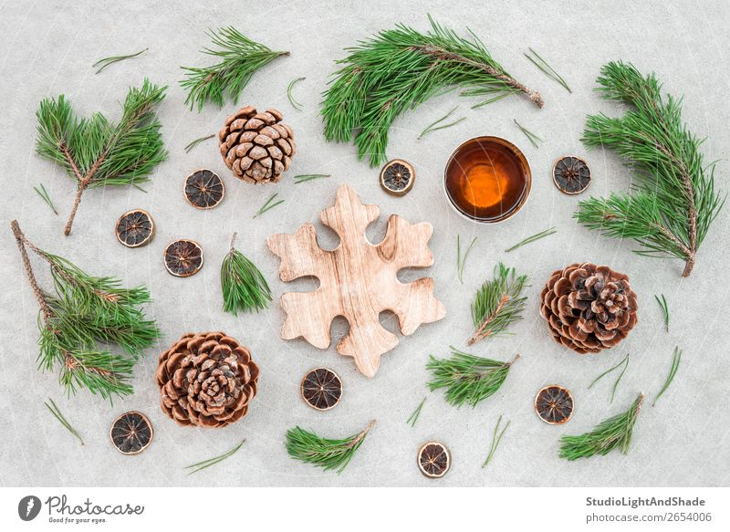Christmas decor with pine tree branches and teacup Nature Christmas & Advent Plant Colour Green Tree Winter Wood Warmth Natural Style Brown Gray Decoration