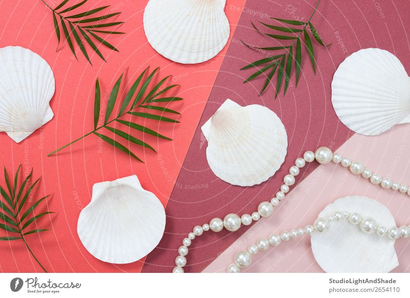 Tropical flat lay with seashells and pearls Luxury Elegant Style Design Exotic Beautiful Vacation & Travel Summer Beach Feminine Nature Plant Tree Leaf Fashion