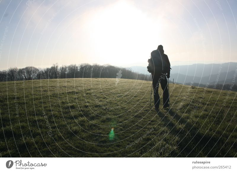 Human being Sky Nature Blue Green Sun Far-off places Environment Landscape Meadow Mountain Spring Grass Freedom Going Field