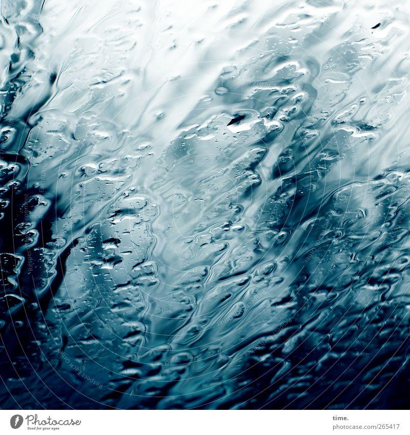 Nature Blue Water White Environment Dark Life Rain Glass Wild Wet Fresh Adventure Drops of water Esthetic Desire