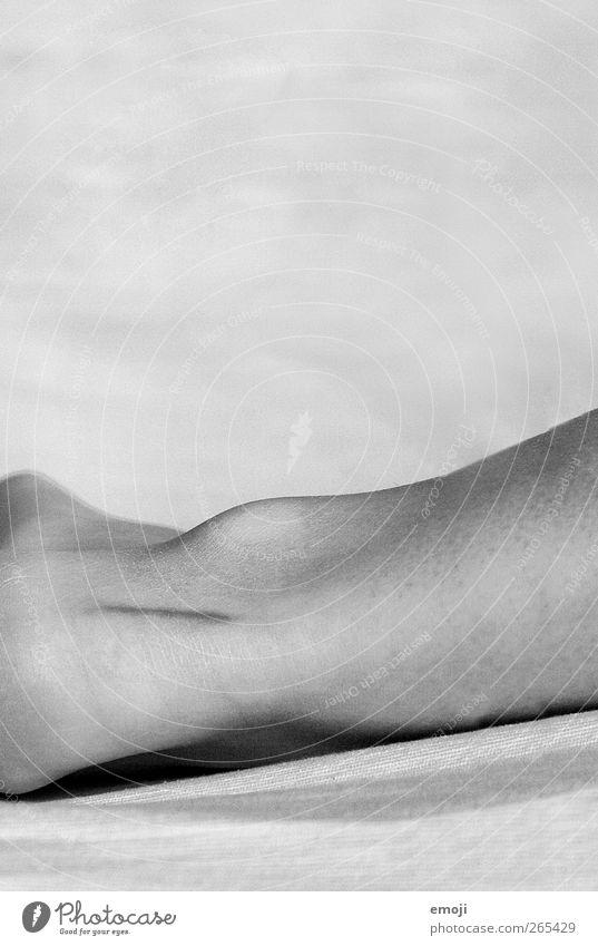 Legs Feet Skin Thin Skeleton Joint Scar