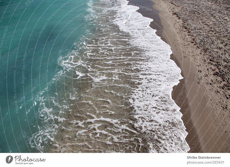 sea border Relaxation Calm Meditation Vacation & Travel Beach Ocean Waves Nature Landscape Elements Sand Water Coast Movement Esthetic Fluid Wet Natural Clean