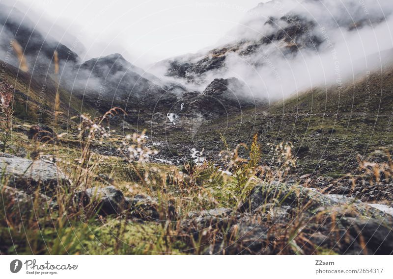 Ascent to the Braunschweiger Hütte | Pitztal | E5 Adventure Hiking Environment Nature Landscape Clouds Autumn Bad weather Fog Alps Mountain Glacier Dark Cold