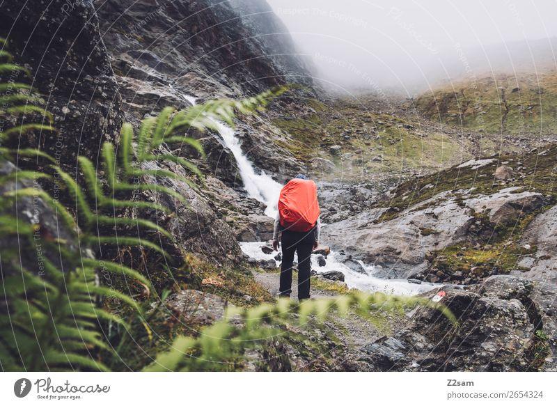 Ascent to the Braunschweiger Hütte | E5 Vacation & Travel Adventure Mountain Hiking Human being Nature Landscape Bad weather Fog Bushes Fern Rock Alps Glacier