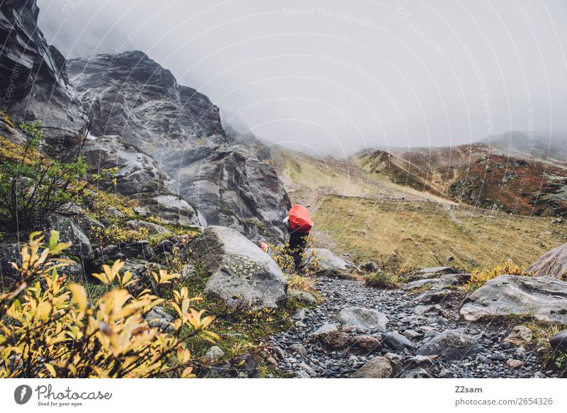 Ascent to the Braunschweiger Hütte | Alpine crossing | E5 Vacation & Travel Adventure Expedition Hiking Human being Nature Landscape Autumn Bad weather Fog Rock