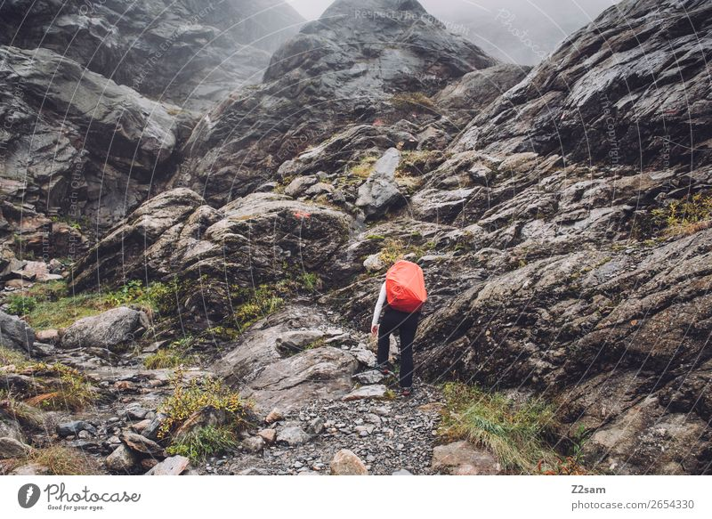 Ascent to the Braunschweiger Hütte | E5 Vacation & Travel Adventure Mountain Hiking Human being Nature Landscape Autumn Bad weather Fog Rock Alps Glacier