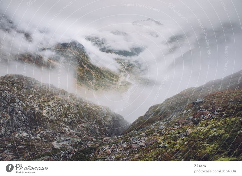 View in direction Mittelberg im Pitztal | E5 Adventure Hiking Nature Landscape Clouds Autumn Bad weather Fog Alps Mountain Glacier Threat Dark Infinity Natural