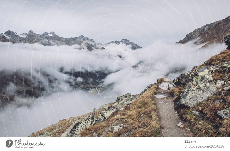 Ascent to the Braunschweiger Hütte | E5 Vacation & Travel Adventure Mountain Hiking Nature Landscape Autumn Bad weather Fog Alps Glacier Gigantic Infinity Tall