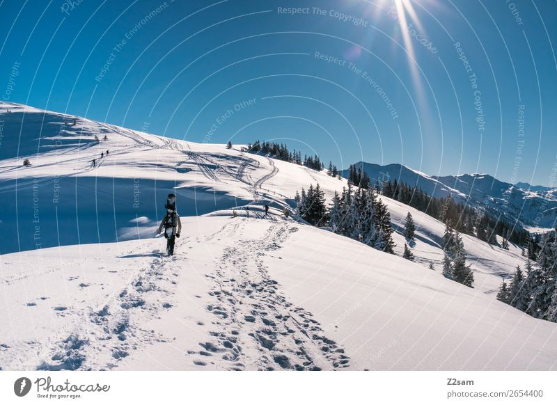 Tourers. Freeriders. Lifestyle Style Vacation & Travel Trip Adventure Mountain Hiking Winter sports Snowboard Masculine Nature Landscape Sun Beautiful weather