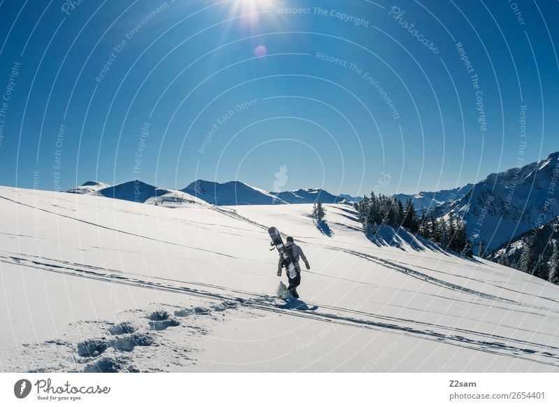 Tourers. Freeriders. Winter Mountain Hiking Winter sports Snowboard Masculine Nature Landscape Sun Beautiful weather Alps Going Sports Cool (slang) Hip & trendy